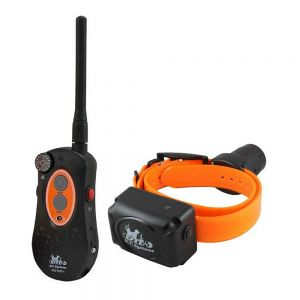DT Systems H2O 1850 PLUS 1 Mile/Up to 2-Dog Training System with Beeper