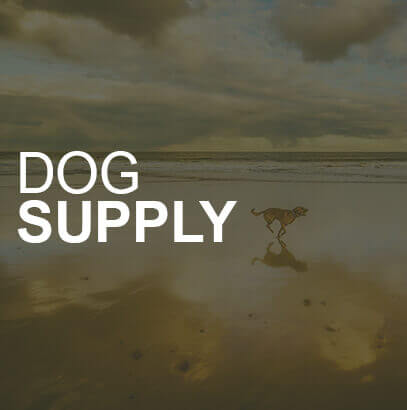 Dog Supply