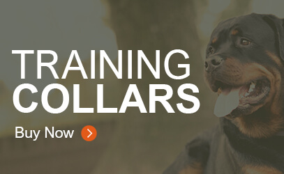 Training Collars
